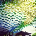 plastic bottles canopy 2