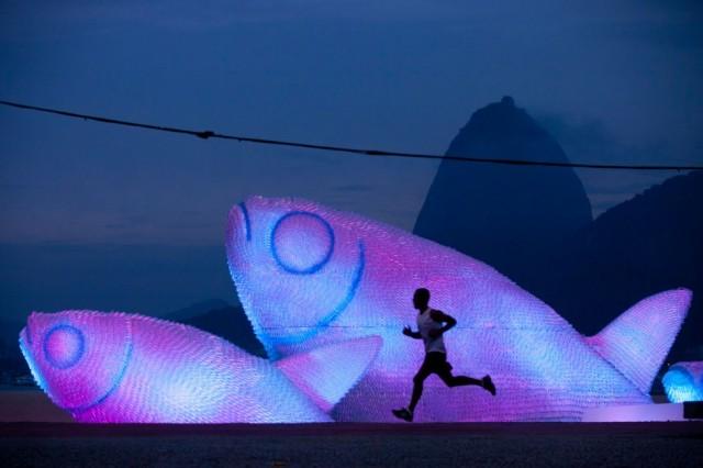 Giant Fish Sculptures  Discarded Plastic Bottles 2