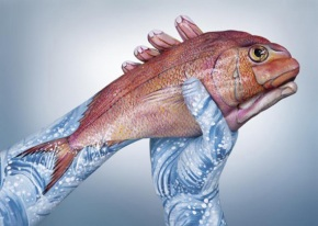 Guido Daniele Handimals 1