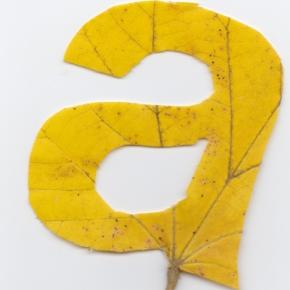 Leaves Typography Twan Van Keulen 2