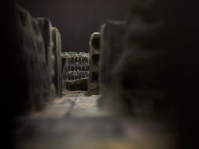 Mold covered model buildings Daniele del Nero 10