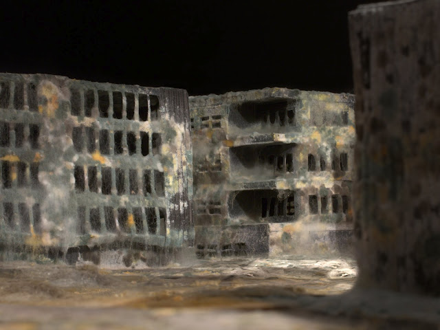 Mold covered model buildings Daniele del Nero 3