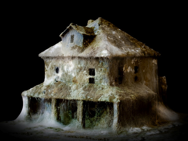 Mold covered model buildings Daniele del Nero 4