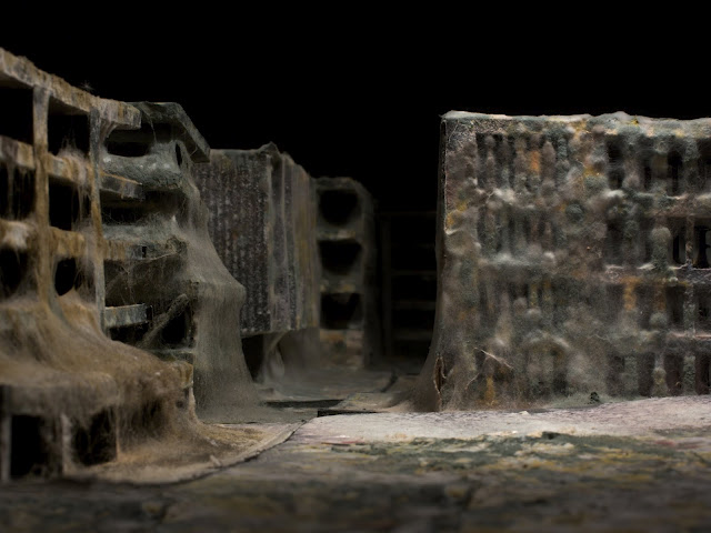 Mold covered model buildings Daniele del Nero 5