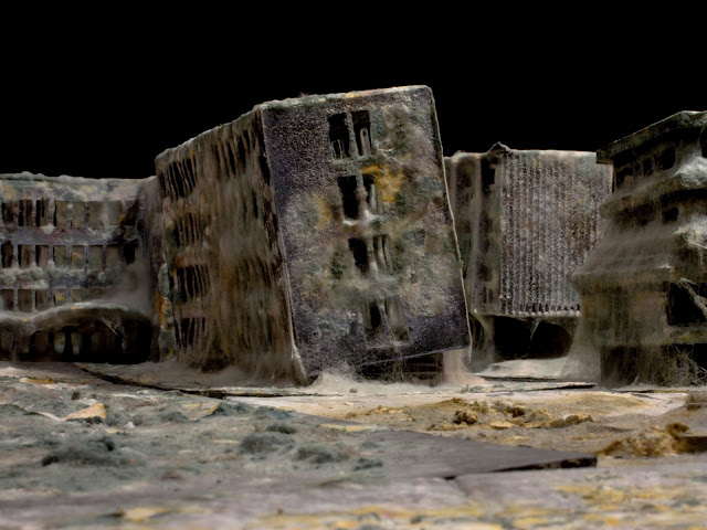 Mold covered model buildings Daniele del Nero