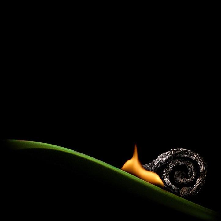 Burnt Matchstick Art Stanislav Aristov 1000