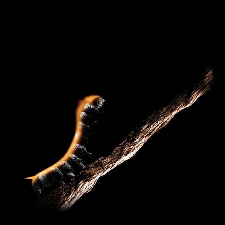 Burnt Matchstick Art Stanislav Aristov 11