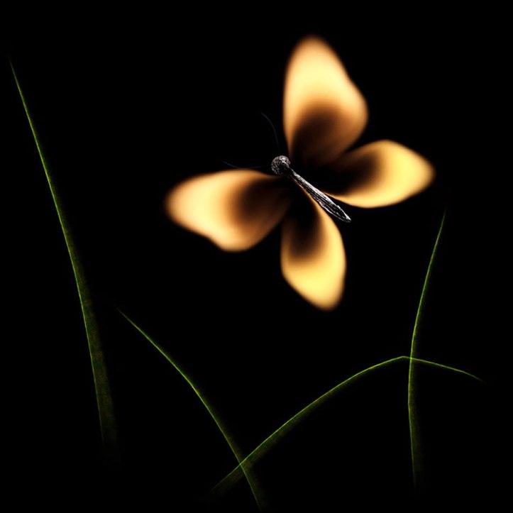 Burnt Matchstick Art Stanislav Aristov 13
