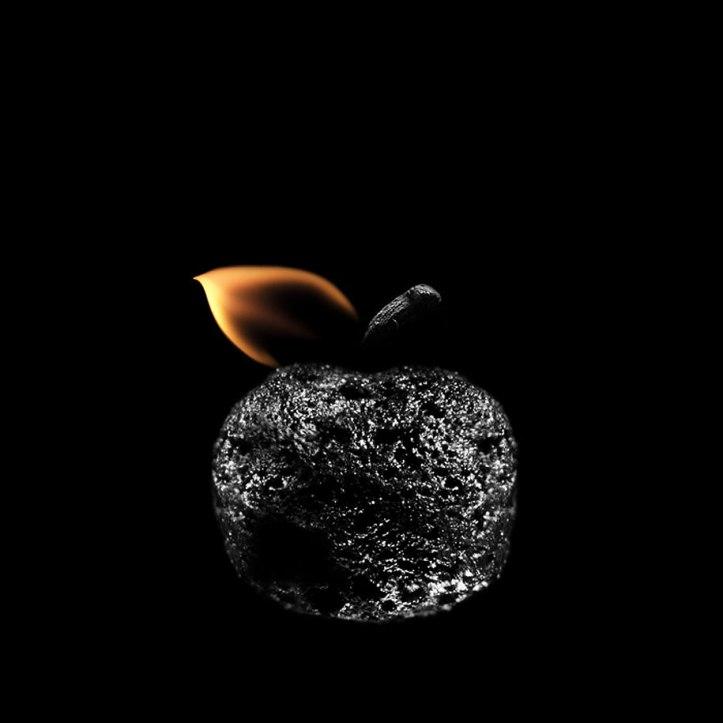 Burnt Matchstick Art Stanislav Aristov 16