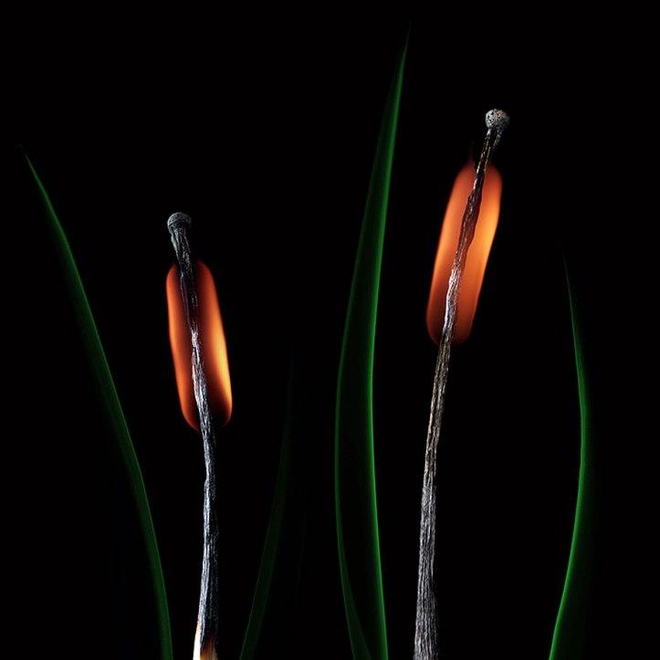 Burnt Matchstick Art Stanislav Aristov 17