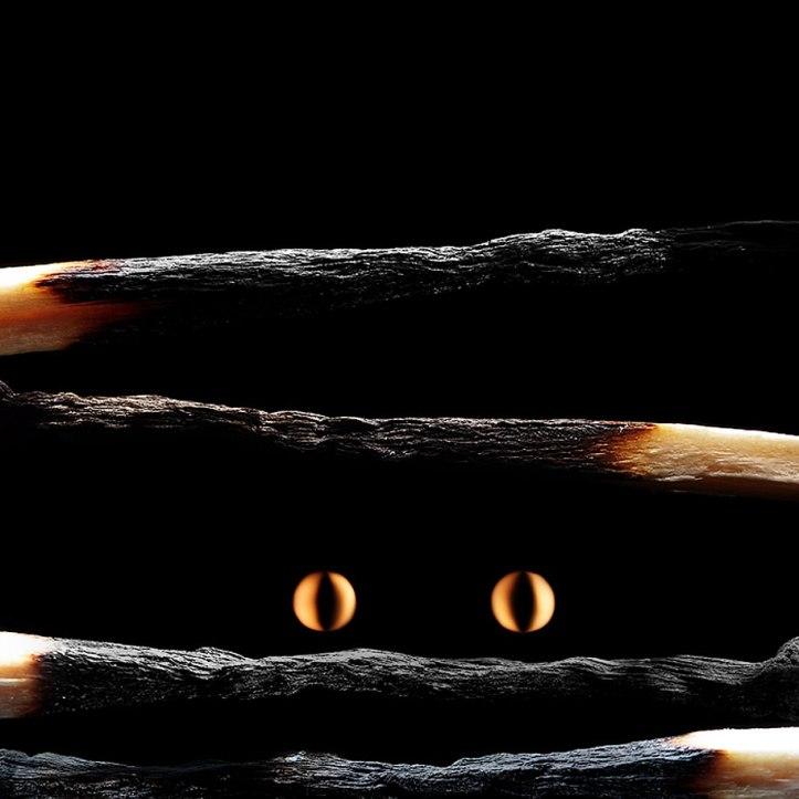 Burnt Matchstick Art Stanislav Aristov 19