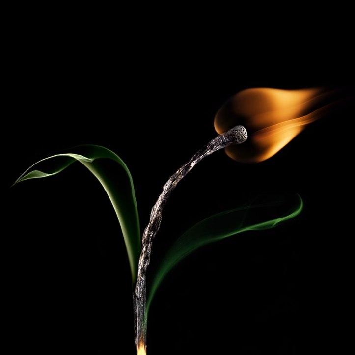 Burnt Matchstick Art Stanislav Aristov 6