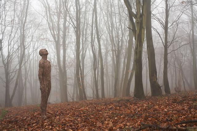 Anna Gillespie Nature Art Sculptures Acorns Beechnut Casings Bronze 5