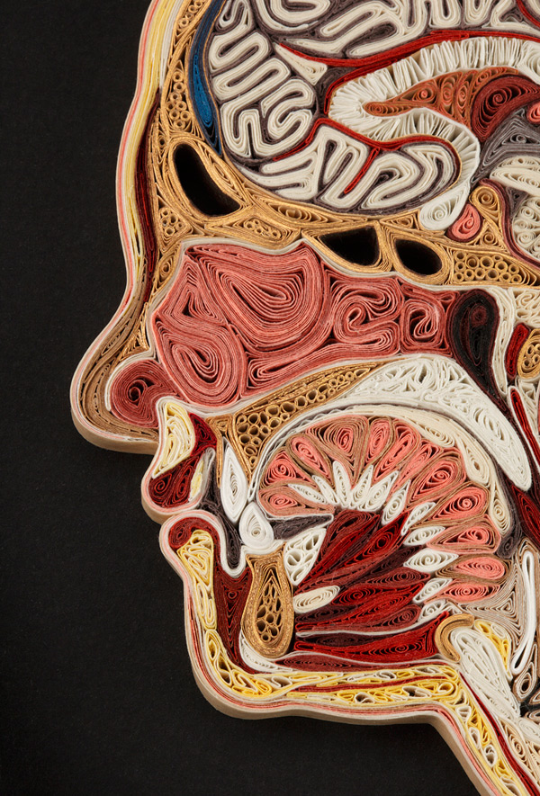 Quilled Paper Anatomy Lisa Nilsson 10