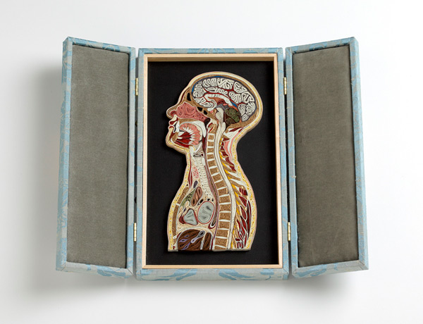 Quilled Paper Anatomy Lisa Nilsson 11