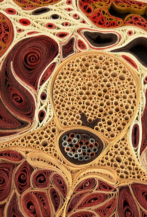 Quilled Paper Anatomy Lisa Nilsson 13