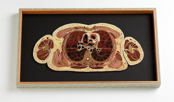 Quilled Paper Anatomy Lisa Nilsson 15