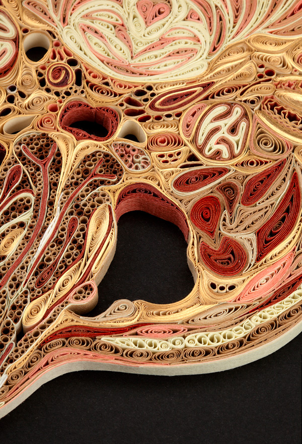 Quilled Paper Anatomy Lisa Nilsson 17
