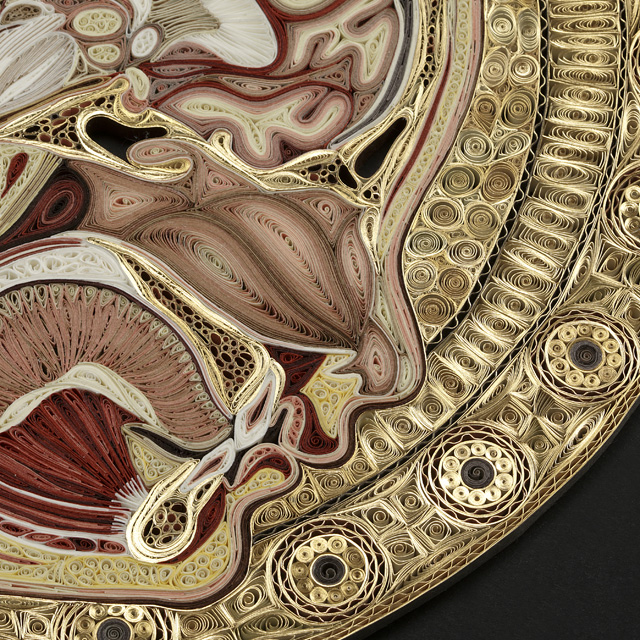 Quilled Paper Anatomy Lisa Nilsson 3