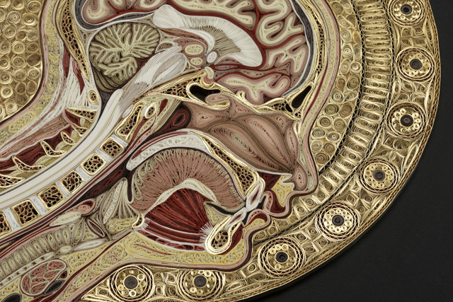 Quilled Paper Anatomy Lisa Nilsson