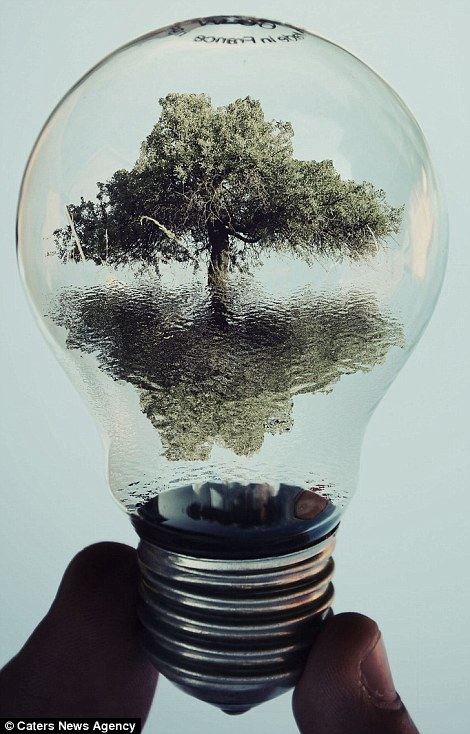 the world inside a light bulb 13