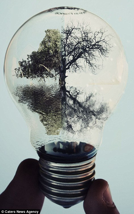 the world inside a light bulb 14