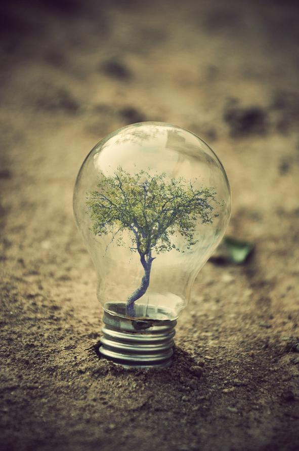 the world inside a light bulb 2