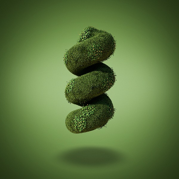 Grass Shapes by David Brodeur 2