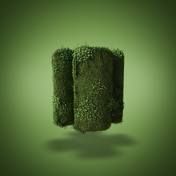 Grass Shapes by David Brodeur 5