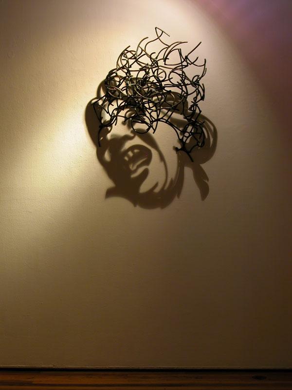 Shadow Sculptures Larry Kagan 11