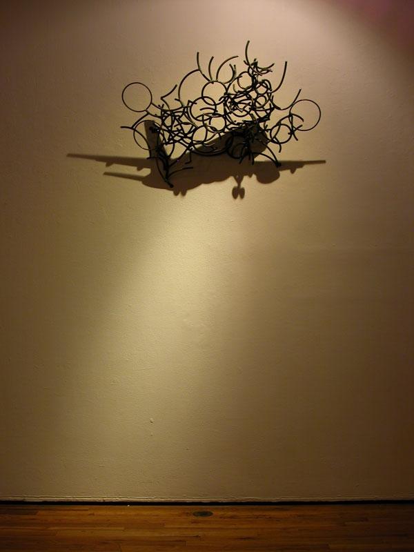 Shadow Sculptures Larry Kagan 17