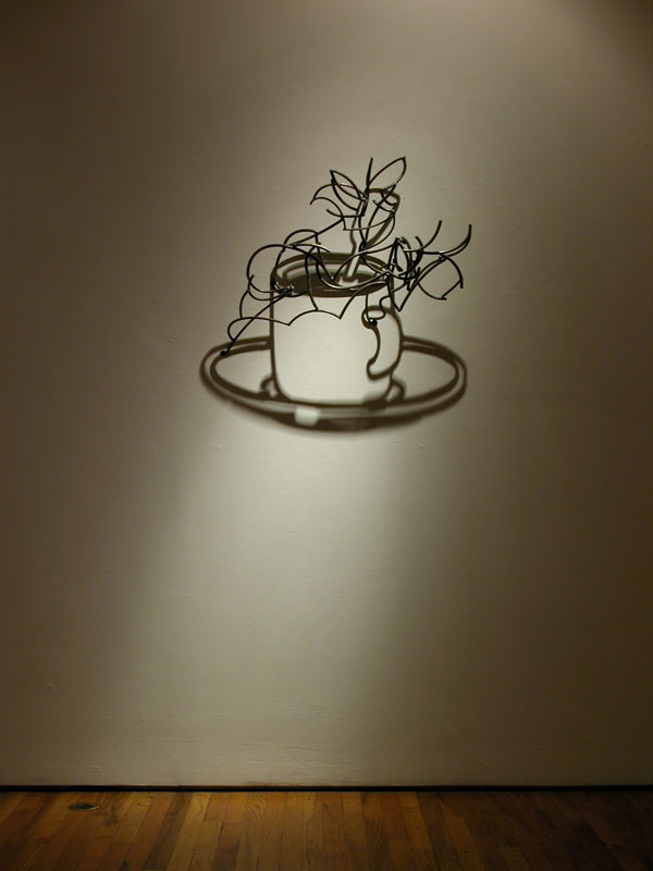 Shadow Sculptures Larry Kagan 18