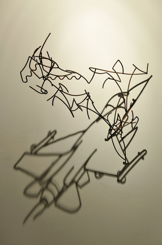 Shadow Sculptures Larry Kagan 22