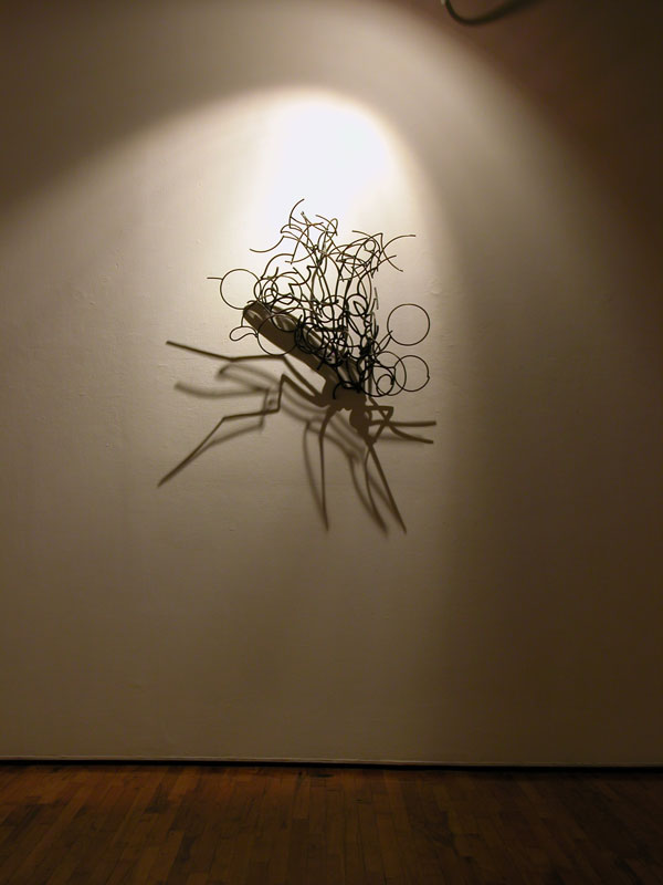 Shadow Sculptures Larry Kagan 6