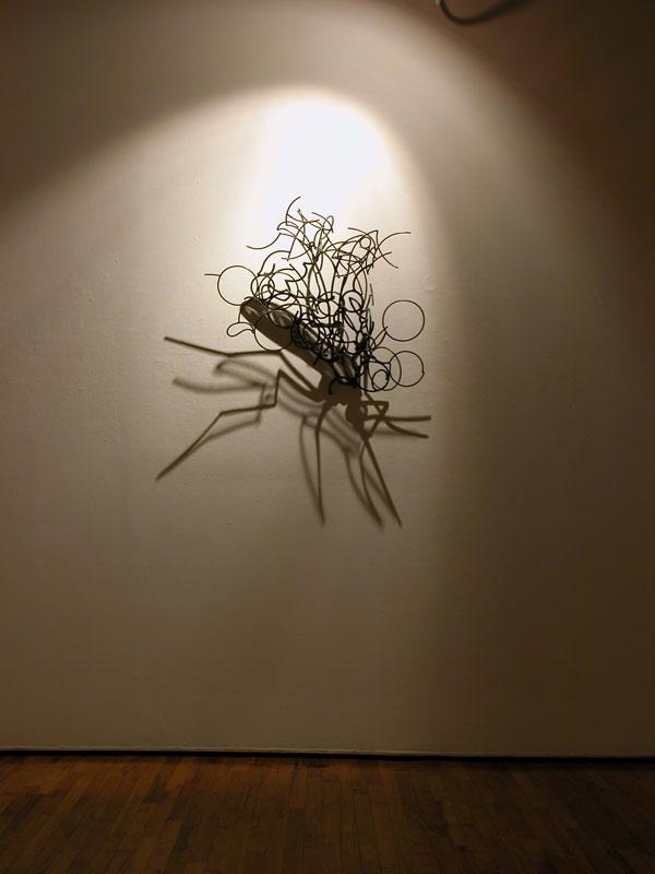 Shadow Sculptures Larry Kagan 6