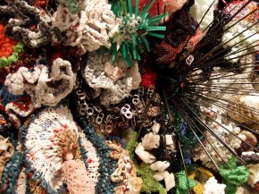 Hyperbolic Crochet Coral Reef 9