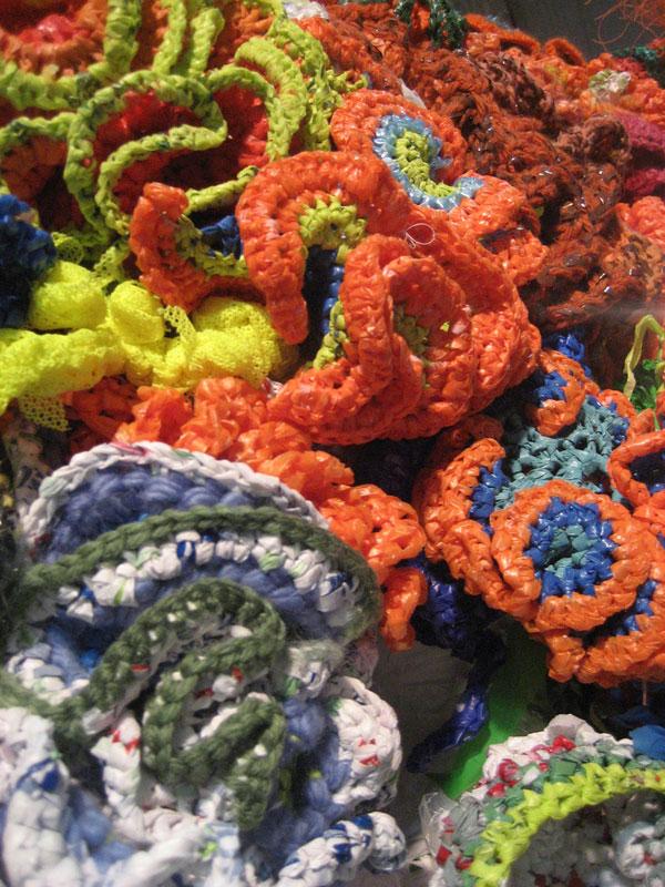 Hyperbolic Crochet Coral Reef VA 13