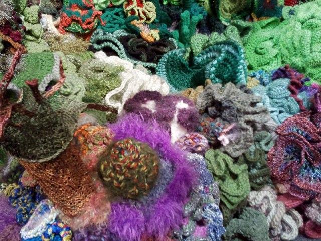 Hyperbolic Crochet Coral Reef VA 14