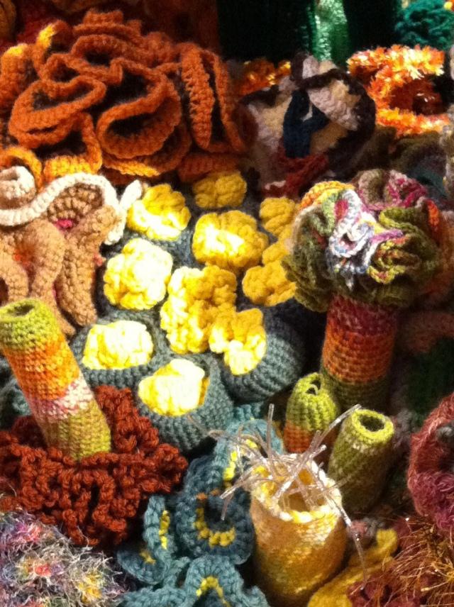 Hyperbolic Crochet Coral Reef VA 17