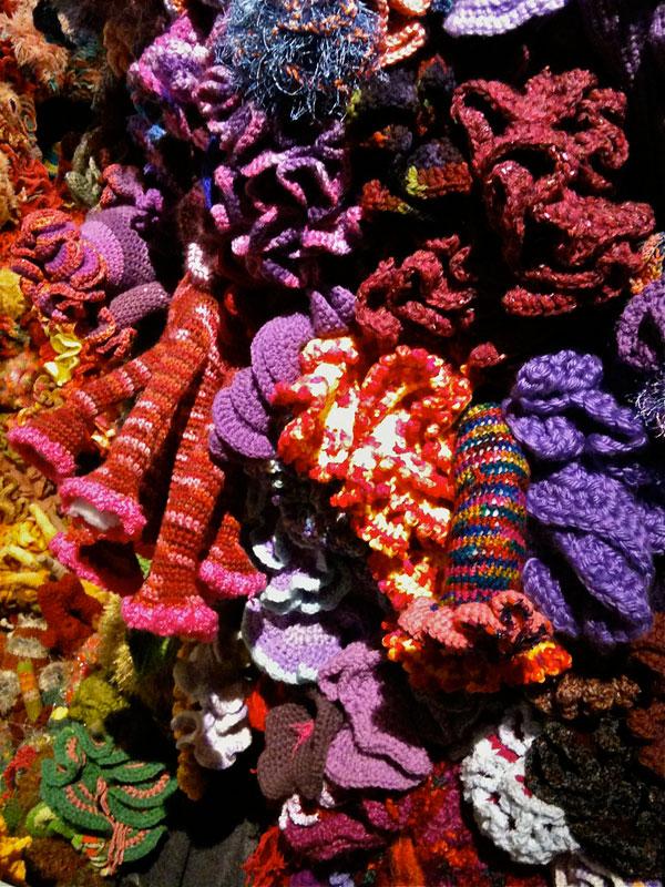 Hyperbolic Crochet Coral Reef VA 18