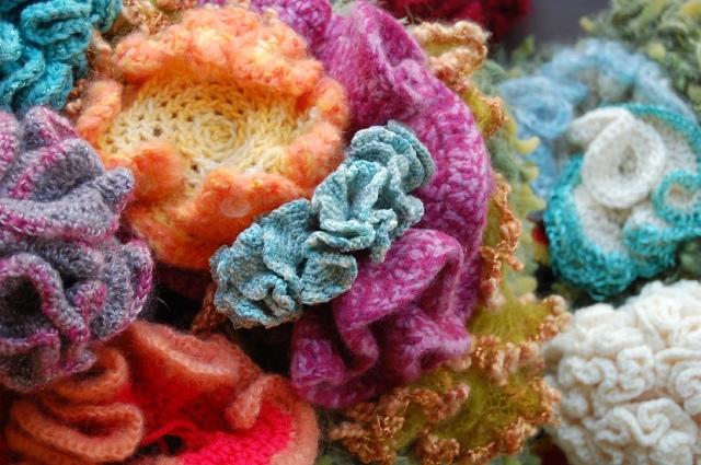 Hyperbolic Crochet Coral Reef VA 20