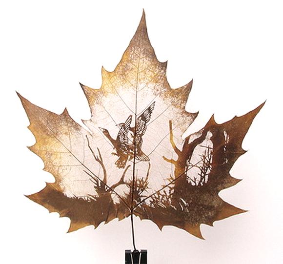 new carved leaves 2