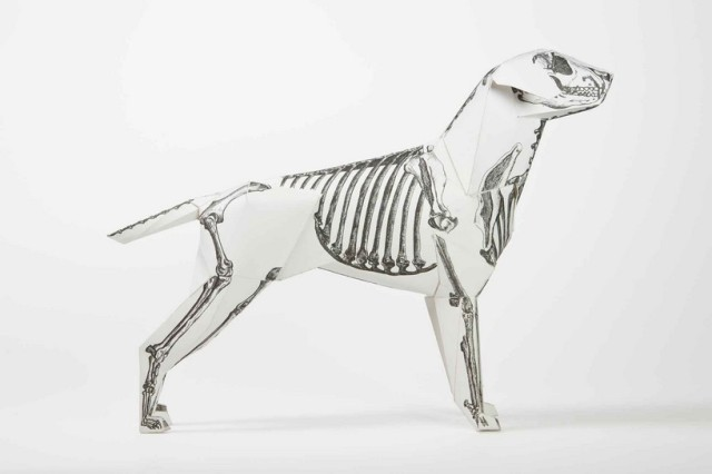 paper dog project Lazerian 20