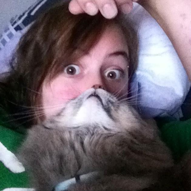 Cat Beards illusion 7