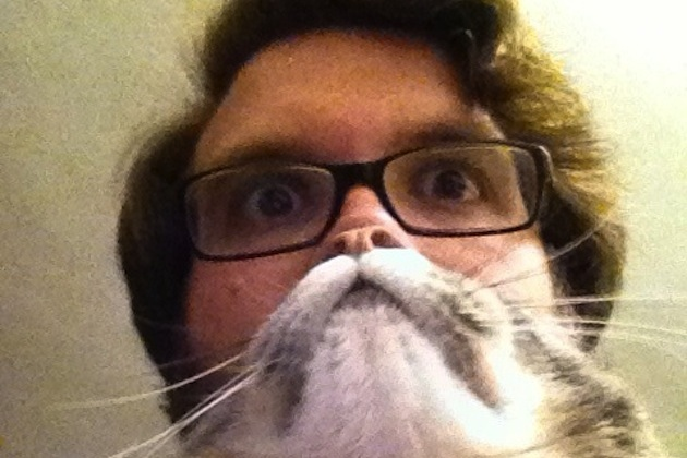 Cat Beards illusion 9