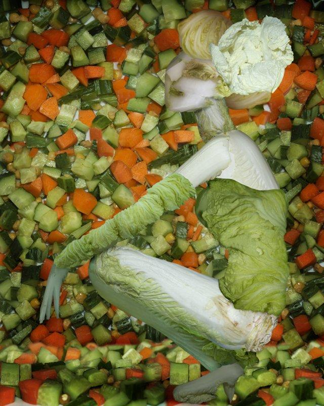Cabbage Sculptures Ju Duoqi 9