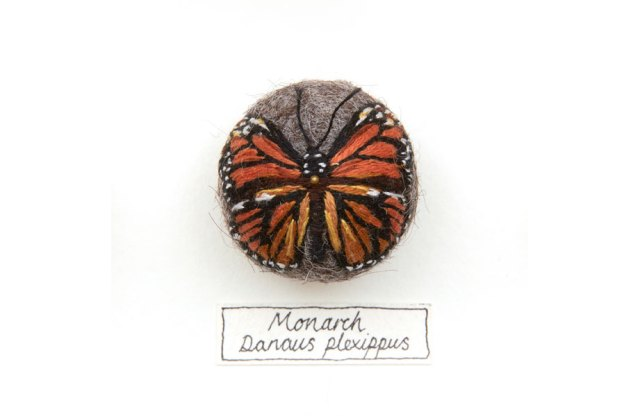 hand-embroiders insects Claire Moynihan 5