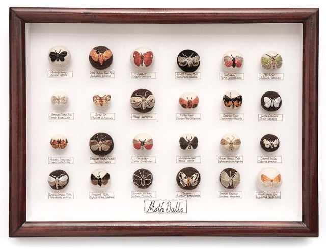 hand-embroiders insects Claire Moynihan