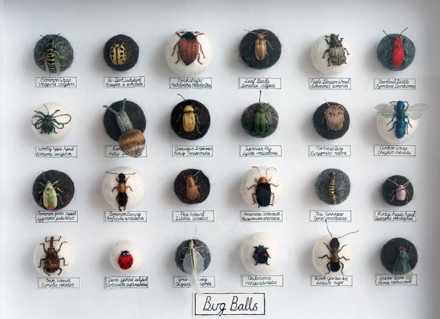 moynihan-bugballs