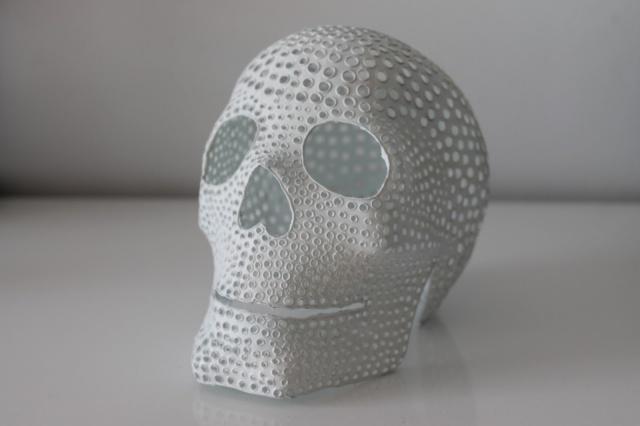 Plastic skulls franco reyes 10